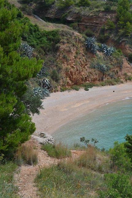Vue sur la plage depuis les hauteurs