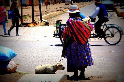 Puno, Pérou : la femme aux moutons