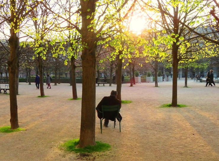 Zen au jardin du Palais-Royal