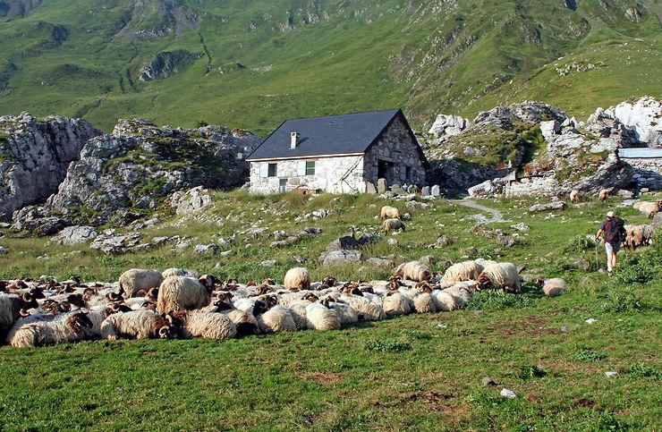 6 coups de coeur dans le Parc national des Pyrénées