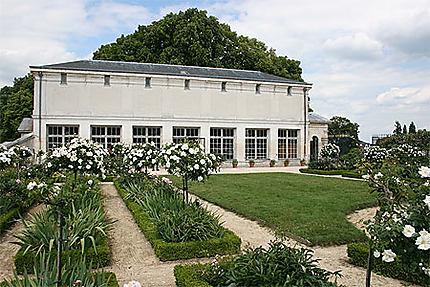 La roseraie du parc du château de Compiègne