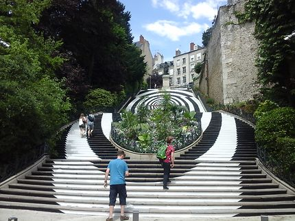 Les marches Denis Papin... un monument à Blois