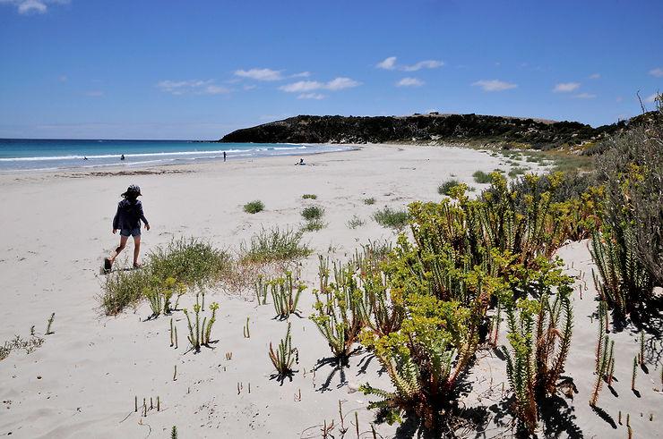 Randonnées sur Kangaroo Island