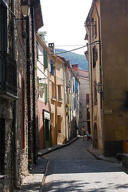 Rue cérétane