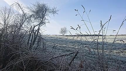 Matin glacé en Corrèze
