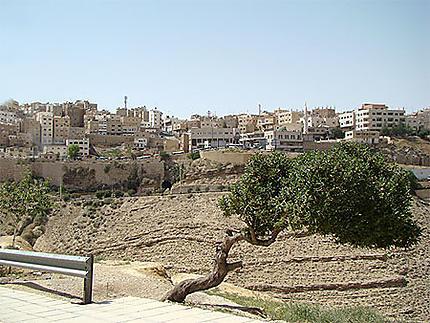 Cité de Kerak en Jordanie