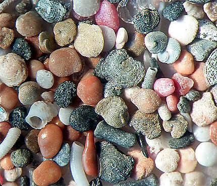 Grains de sable