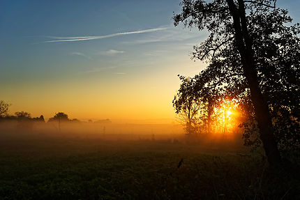 Lever de soleil brumeux sur Hindisheim en Alsace