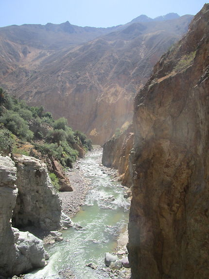 Pause fraîcheur au fond du canyon de Colca