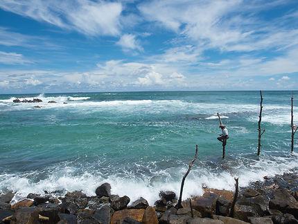 Pêcheur au Sri Lanka