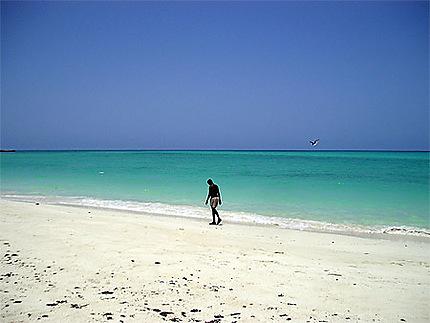 Homme marchant sur le sable, île Moucha