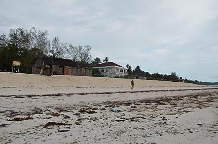 Pwani Beach