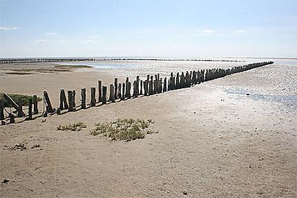 Une plage de l'île de Mando