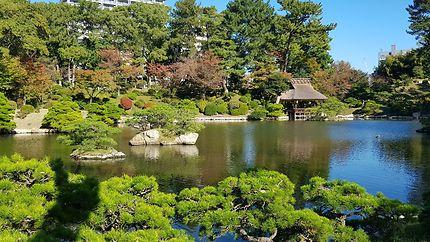 Maison de thé au jardin Shukkei-en