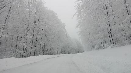 Route enneigé dans le Bas-Rhin