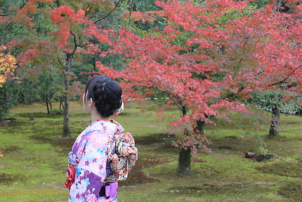 Femme en kimono - Pavillon d'or