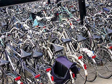 Vélos à Enkhuizen