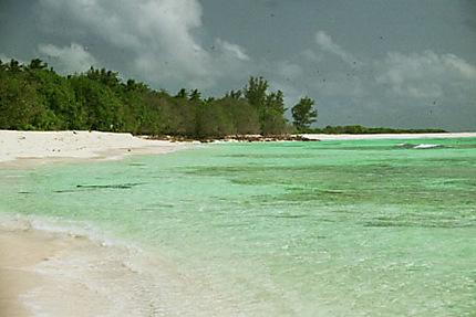 Plage de Bird Island