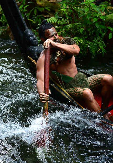 Maori's Way