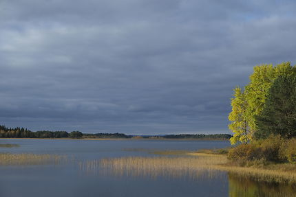 Paysage d'automne en Finlande
