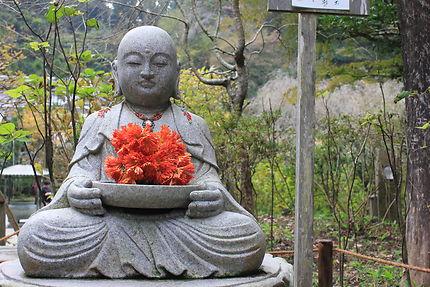 Jardin Zen à Kamakura