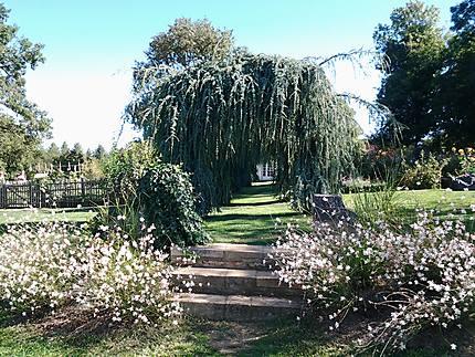 Côté jardin potager