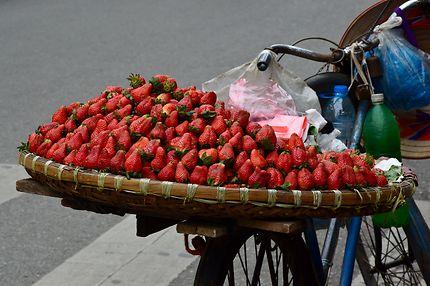 Échoppe ambulante de fraises au Vietnam