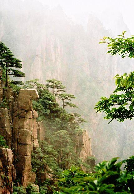 Dans la brume du mont Huang Shan