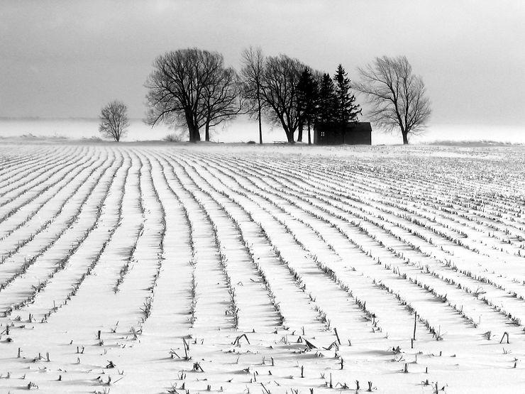 L'hiver en Ontario, Canada