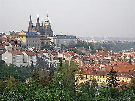 Château et Cathédrale Saint-Guy