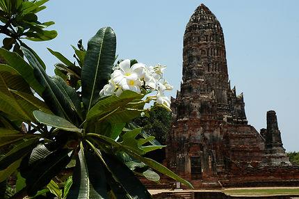 Wat Chai Watthanaram, à Ayutthaya