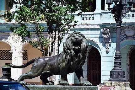 Lion du Prado