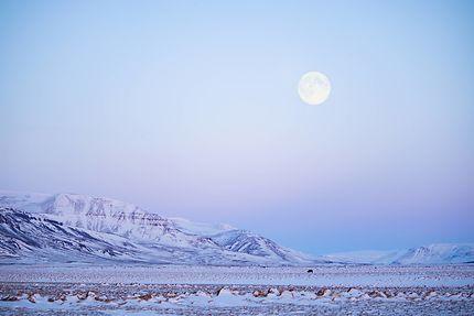 Sous la lune, péninsule de Snæfellsnes
