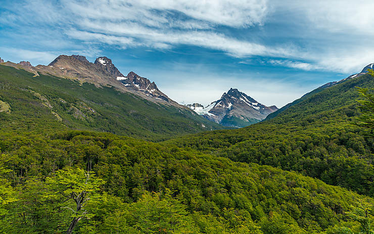 Chili - Patagonie : 4,5 millions d'hectares seront transformés en parcs nationaux