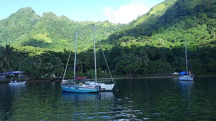 Baie d'Opunohu Moorea