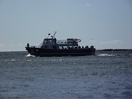 Bateau croisière Percé-Île Bonaventure.