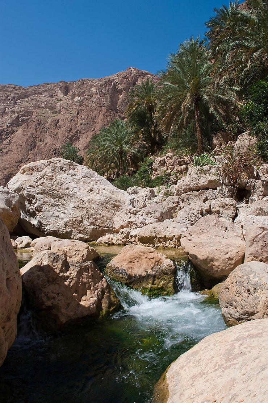 De sublimes randonnées en montagne et dans les wadis