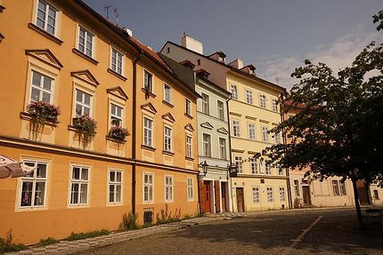 Lazenska