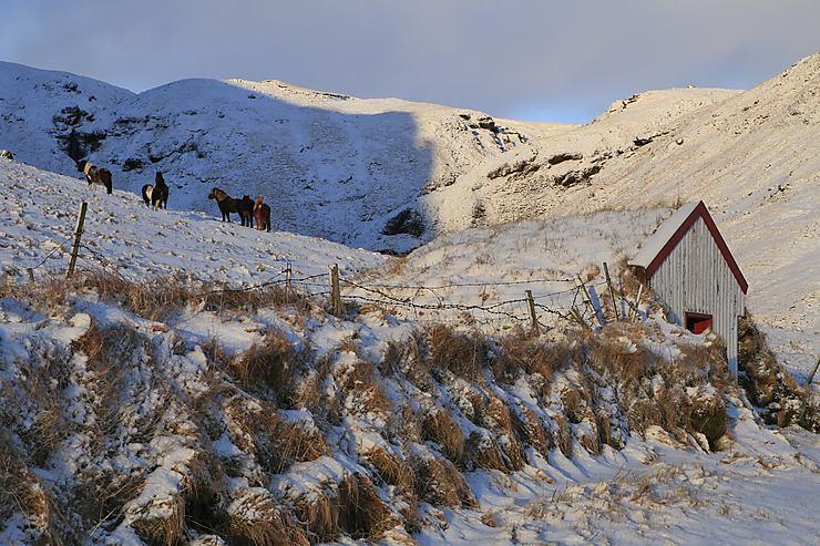Lumière hivernale près de Skogafoss, Islande