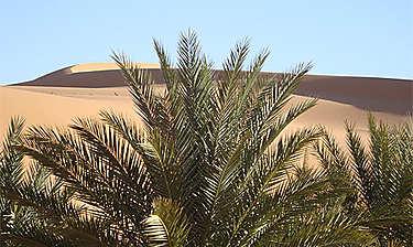 Timimoun (Sahara algérien)