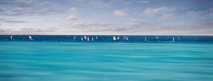 Sea bi color, Nice