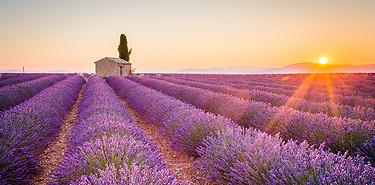Réserver un weekend en Provence