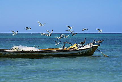 Bateau de pêcheur à Falmouth