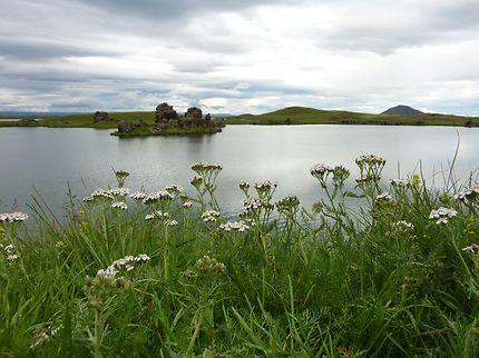 Au bord du lac Mývatn