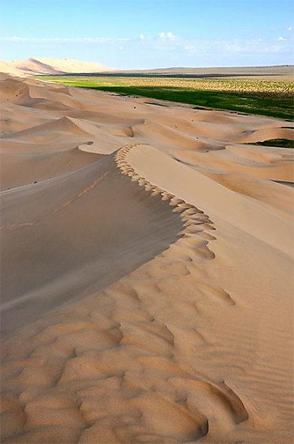 La dune Khongoryn Els