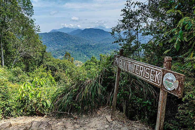 Parc national de Taman Negara (Malaisie péninsulaire)