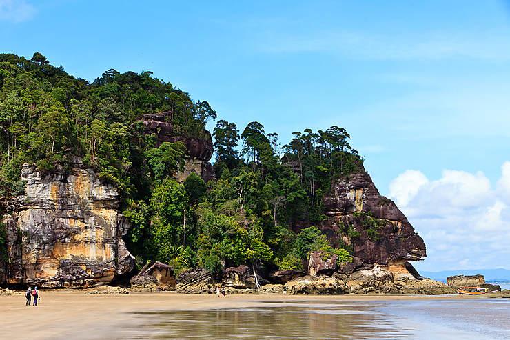 Parcs nationaux de Bako, Kubah et Tanjung Datu (Sarawak, Bornéo)