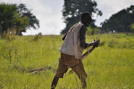 Au Bénin, travail dans les champs