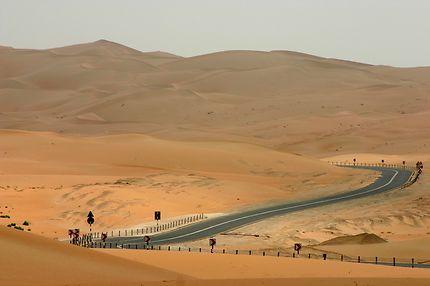 Emirats Arabes Unis - Liwa