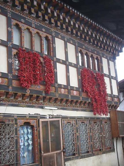 En Suisse c'est Geraniums:au Bhoutan c'est chillis